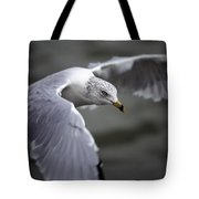 Johnathan Livingston Seagull Tote Bag