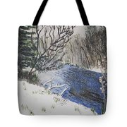 Johnson Vermont In Spring Snow Storm Tote Bag