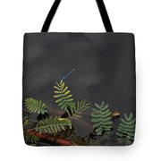 Joint Vetch With Dragon Fly Tote Bag