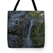 Jones Falls Tote Bag