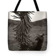 Joshua Top Over Hills Tote Bag