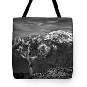 Joshua Tree At Keys View In Black And White Tote Bag