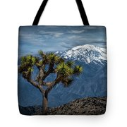 Joshua Tree At Keys View In Joshua Park National Park Tote Bag