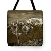 Joshua Tree At Keys View In Sepia Tone Tote Bag
