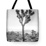 Joshua Tree Before Storm Tote Bag
