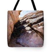 Joshua Tree Ca 6 Tote Bag