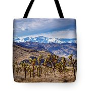 Joshua Tree National Park 2 Tote Bag