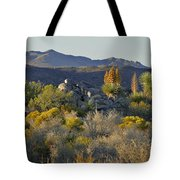 Joshua Tree National Park In California Tote Bag