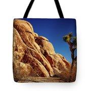 Joshua Tree Np 3 Tote Bag