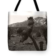Joshua With Snow Capped Mountain Tote Bag