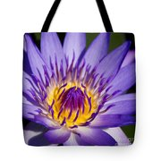 Journey Into The Heart Of Love Tote Bag
