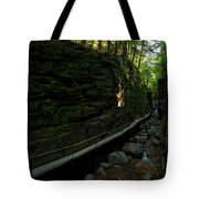 Journey Through The Gorge Tote Bag