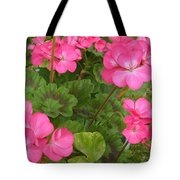Joyful Geranium  Tote Bag