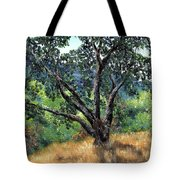 Juan Bautista De Anza Trail Oak Tote Bag