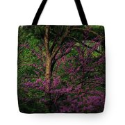 Judas In The Forest Tote Bag
