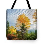 Jughandle Mountain Tote Bag