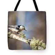 Jump - White-breasted Nuthatch Tote Bag