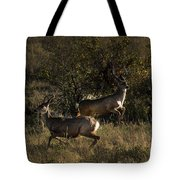 Jumping Deer Tote Bag