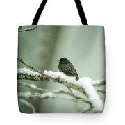 Junco In New Fallen Snow Tote Bag