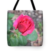 June Rose #5 Tote Bag