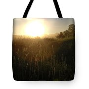 June Sunrise Over Dew On Grass Tote Bag