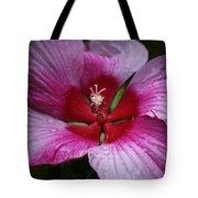 Junes Hibiscus 1 Tote Bag