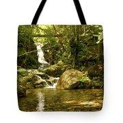 Jungle Appeal Tote Bag