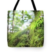 Jungle Gym Tote Bag