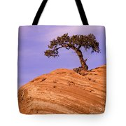 Juniper On Sandstone Tote Bag