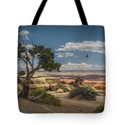 Juniper Tree On A Mesa Tote Bag