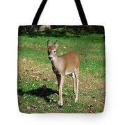 Just A Baby Tote Bag