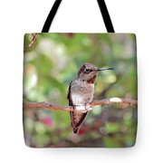 Brief Rest Tote Bag