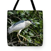 Just A Little Closer Tote Bag