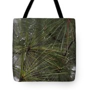Just After The Rain 2 Tote Bag
