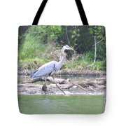 Just An Evening Stroll I Tote Bag