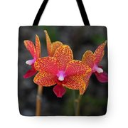 Just Another Sunday Tote Bag