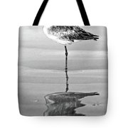 Just Being Coy - Bw Tote Bag