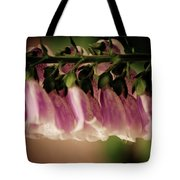 Just Hangin Around Tote Bag