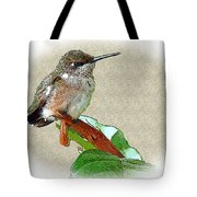 Just Hangin' Out Tote Bag