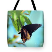Just Hanging Out - Red-spotted Purple Butterfly Tote Bag