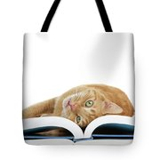Just One More Story Please? Tote Bag