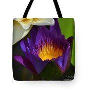 Just Opening Purple Waterlily -  Square Tote Bag
