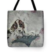 Just Perfect Tote Bag