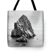 Just Right Tote Bag