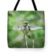 Just Spread Your Wings  Tote Bag