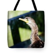 Juvenile Cormorant Profile Tote Bag