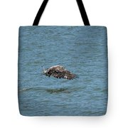 Juvenile Eagle Fishing Pickwick Lake Tennessee 031620161315 Tote Bag
