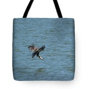 Juvenile Eagle Fishing Pickwick Lake Tennessee 031620161318 Tote Bag