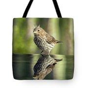 Juvenile House Sparrow 0689 Tote Bag