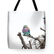 Juvenile Lilac Breasted Roller Tote Bag